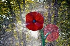 Bella fontana sotto forma di fiore in un parco della città, Kharkov, Ucraina immagini stock libere da diritti