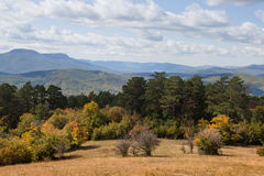 Bella foresta di autunno Fotografie Stock Libere da Diritti