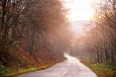 Bella foresta di autunno con la strada campestre della montagna al tramonto Immagini Stock Libere da Diritti
