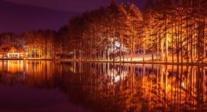 Bella foresta di riflessione nel lago Zlatibor immagine stock libera da diritti
