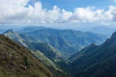 Bella foresta pluviale tropicale nella parte settentrionale della Tailandia Immagini Stock Libere da Diritti