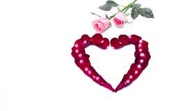 Bella forma del cuore della rosa rossa e della rosa di rosa isolate Fotografia Stock Libera da Diritti