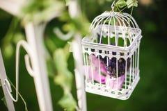 Bella gabbia decorativa con i bei fiori fotografia stock libera da diritti