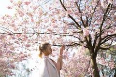Bella giovane donna bionda nel parco di Sakura Cherry Blossom in primavera che gode della natura e del tempo libero durante lei c fotografia stock
