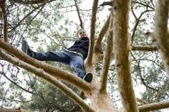 Bella giovane donna che guarda giù da un albero alto Fotografia Stock