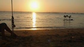 Bella giovane donna che oscilla su un'oscillazione al tramonto sulla spiaggia Movimento lento 1920x1080 stock footage