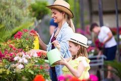 Bella giovane donna con sua figlia che innaffia le piante nella serra Immagini Stock Libere da Diritti