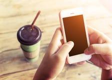 Bella giovane donna dei pantaloni a vita bassa che utilizza Smart Phone nella caffetteria, femmina che guarda il suo telefono del Immagini Stock