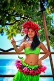 Bella giovane donna hawaiana polinesiana che esegue ballo tradizionale di hula Immagini Stock Libere da Diritti