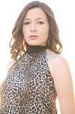Bella giovane donna nella parte superiore della stampa del leopardo Immagine Stock Libera da Diritti