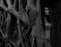 Bella giovane donna vicino all'albero di banyan nella foresta pluviale in Indi fotografie stock