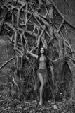 Bella giovane donna vicino all'albero di banyan nella foresta pluviale in Indi fotografia stock libera da diritti