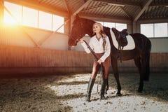 Bella giovane ragazza bionda elegante che sta vicino alla sua concorrenza dell'uniforme di condimento del cavallo fotografia stock