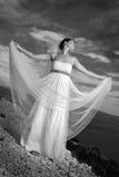 Bella giovane sposa Immagini Stock Libere da Diritti