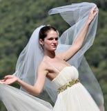 Bella giovane sposa Immagini Stock