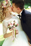 Bella giovane sposa felice che bacia sposo bello nella parità soleggiata Fotografia Stock Libera da Diritti