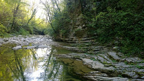 Bella gola con il fiume, le rocce e la vegetazione fertile immagini stock libere da diritti