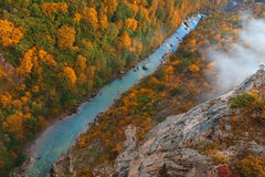 Bella gola del fiume di Cesalpina da sopra nell'autunno immagine stock libera da diritti