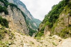Bella gola verde in montagne ossetiche immagine stock