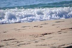 Bella gomma piuma del mare Immagine Stock Libera da Diritti