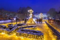 Bella illuminazione di inverno al parco Oliwski a Danzica, Polonia Fotografia Stock Libera da Diritti