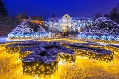 Bella illuminazione di inverno al parco Oliwski a Danzica, Polonia Fotografia Stock