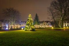 Bella illuminazione di Natale al parco Fotografia Stock
