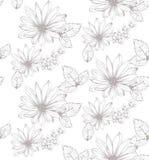 Bella illustrazione di vettore dei fiori Fondo floreale del modello Linea illustrazioni grafiche disegnate a mano di stile di art Fotografie Stock