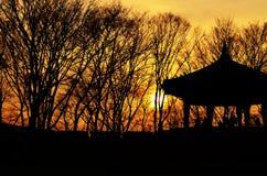 Bella immagine del paesaggio con la siluetta degli alberi al tramonto Immagine Stock