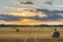 Bella immagine del paesaggio della campagna delle balle di fieno nel fie di estate Immagine Stock Libera da Diritti