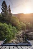 Bella immagine del paesaggio di luce solare che scorre attraverso gli alberi dentro Fotografia Stock
