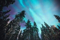 Bella immagine di Aurora Borealis vibrante verde multicolore massiccia, aurora boreale Immagine Stock