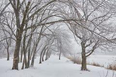 Bella immagine di inverno landscape Immagini Stock