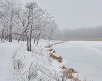Bella immagine di inverno landscape Fotografie Stock Libere da Diritti