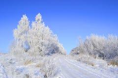 Bella immagine di inverno landscape Fotografia Stock Libera da Diritti