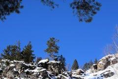 Bella immagine di inverno landscape Montagne e betulle siberia Khakassia fotografie stock libere da diritti