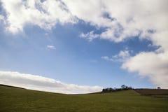Bella immagine luminosa del paesaggio del distretto di punta su Sprin soleggiato Immagine Stock