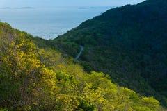Bella isola con la vista di oceano Immagini Stock