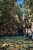Bella laguna blu della giungla, Khao Sok National Park. La Tailandia, Fotografia Stock