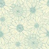 Bella linea fiori della luce Fotografia Stock Libera da Diritti