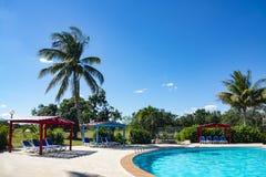 Bella località di soggiorno tropicale con la piscina, le Sun-chaise-lounge e le palme durante il giorno soleggiato caldo, vacanze immagine stock libera da diritti