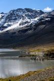 Bella luce su un lago e su un paesaggio montagnoso nevoso con re Penguins nei gruppi sulla riva, st Andrews Bay, Georgi del sud fotografia stock