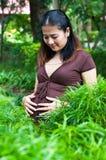 Bella madre incinta da essere Immagini Stock Libere da Diritti