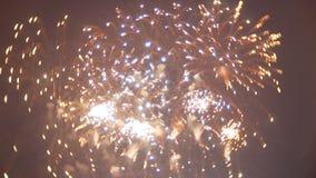 Bella manifestazione dei fuochi d'artificio nel cielo notturno stock footage
