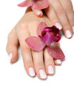 Bella mano con il manicure e l'orchidea del chiodo Immagine Stock Libera da Diritti