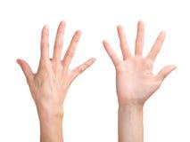 Bella mano della donna che mostra le cinque dita Si anteriore e posteriore immagini stock