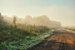 Bella mattina nebbiosa fuori della città di estate Immagini Stock Libere da Diritti