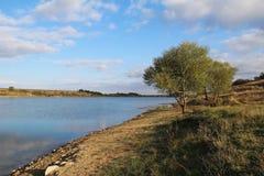 Bella mattina nel lago Fotografie Stock Libere da Diritti