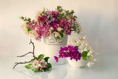 Bella merce nel carrello dei fiori di Burevestnik immagini stock libere da diritti