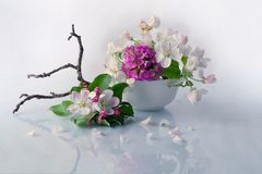 Bella merce nel carrello dei fiori di Burevestnik Fotografie Stock
